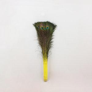 Janshop Pauwenveren 20 stuks - 70 tot 80 cm geel geverfd