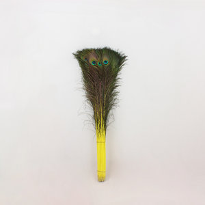 Pauwenveren 10 stuks - 70 tot 80 cm geel geverfd