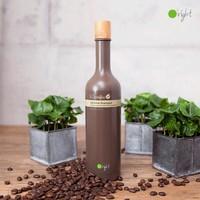 Caffeine Shampoo 400ml