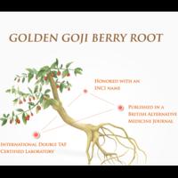 Goji Berry Lucent Intensifier Serum 30ml