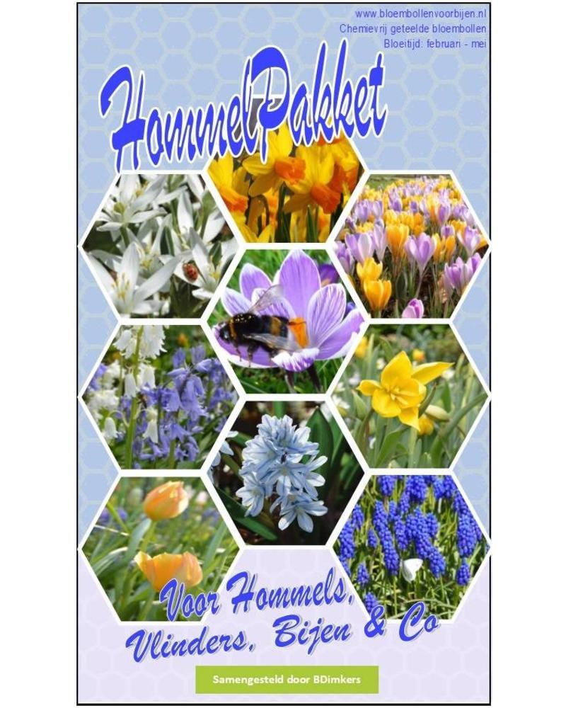 Bumblebee Box full of surprising flower bulbs