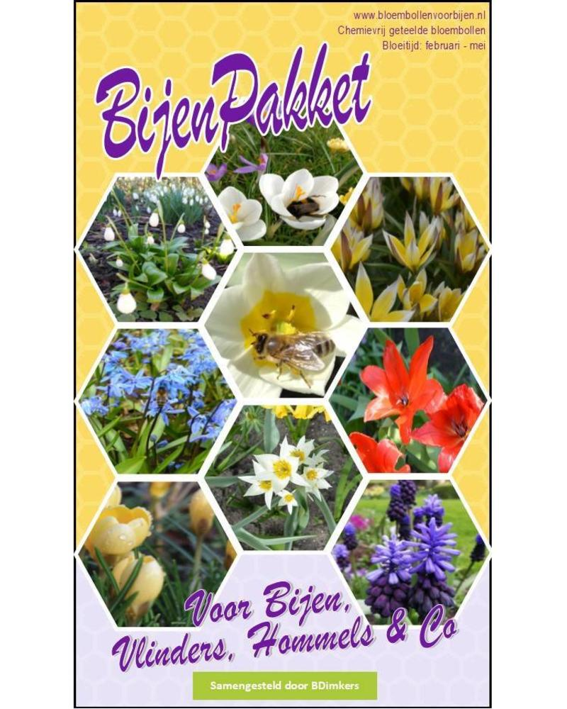 Beefriendly Box: cheerful spring flowering bulbs with lots of nectar and pollen - Copy