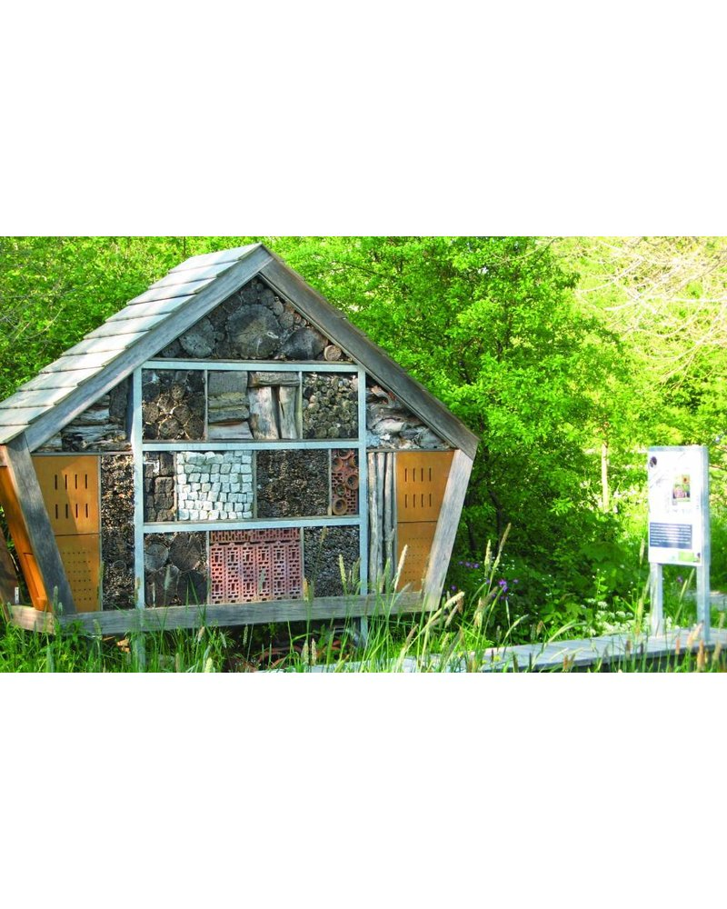 Bee hotel? Besides nesting place, also offer food!