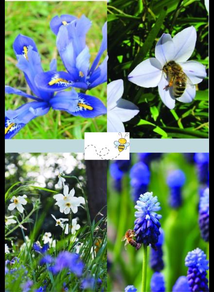 Bienen Mix 02 - blue shades