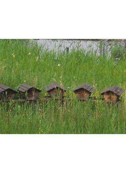 Medium Beekeeper package 7 - 2021