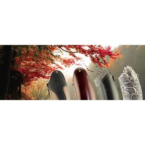 accessoires Feste Zier- oder Jagdstulpe,in verschiedenen Farben und Designs erhältlich. Nur bei Bestellung neuer Reitstiefel