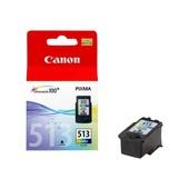 Canon Originele Canon inktcartridge CL-513 kleur 2971B001