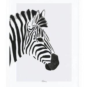 Lilipinso Zebra poster