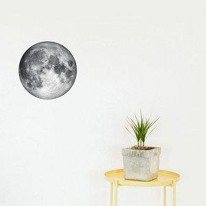 Chispum Moon