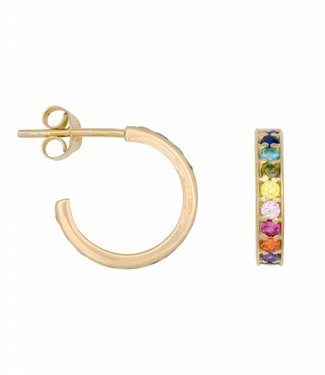 Oorbel Rainbow hoops gold (14mm)
