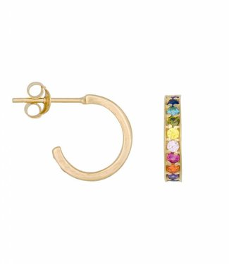 Eline Rosina Oorbel Rainbow hoops gold (12mm)