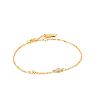 Ania Haie Armband Gold midnight