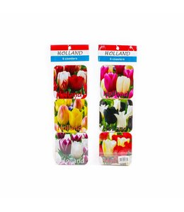 Coasters tulpen color Holland