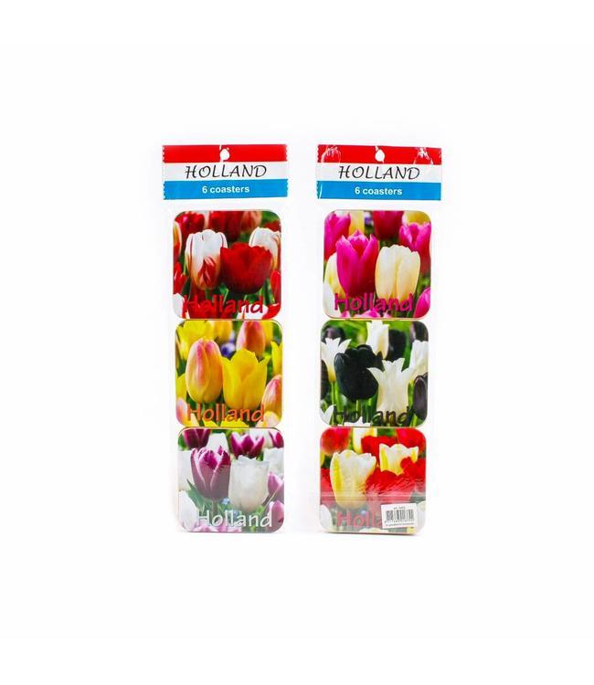 Coasters tulpen color Holland