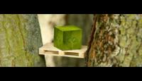 Hoe bijdraagt kluis.com aan een schoner en CO2 neutraler milieu?