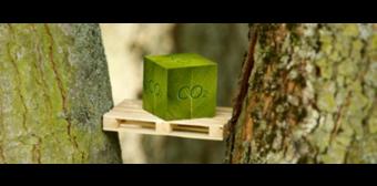 Wat doet kluis.com om de CO2-footprint te verkleinen?
