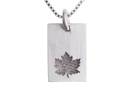 Rectangle avec feuille d'arbre