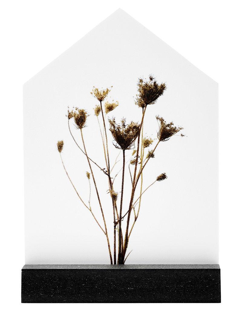 Zoedt Cadeaupakket: Huisje met droogbloemen' in cadeauverpakking