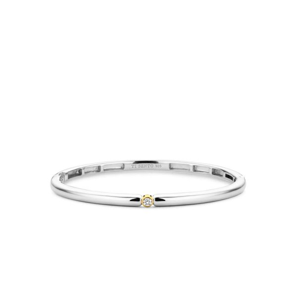 Bicolor zilveren armband (2896ZY)