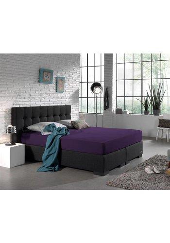 Homecare Drap housse Double Jersey 220 gr. violet