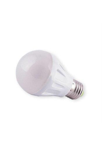 Neckermann Led-Lampe 3W 220V E27 B22