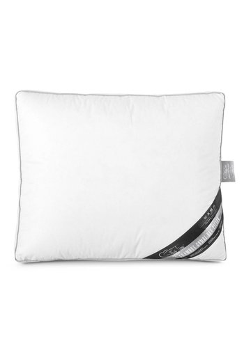 Sleeptime 3 Chamber Box Pillow White