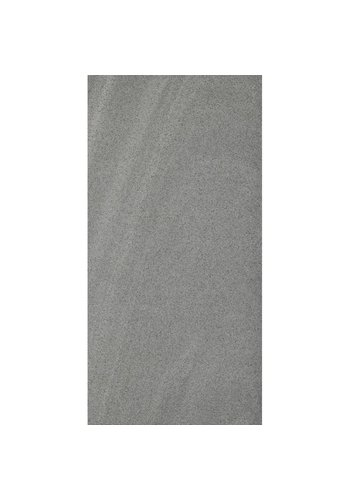 Neckermann Carrelage de sol et mural gris 30x60 cm prix par M2