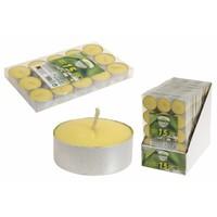 Theelichtjes - citronella - 15 stuks