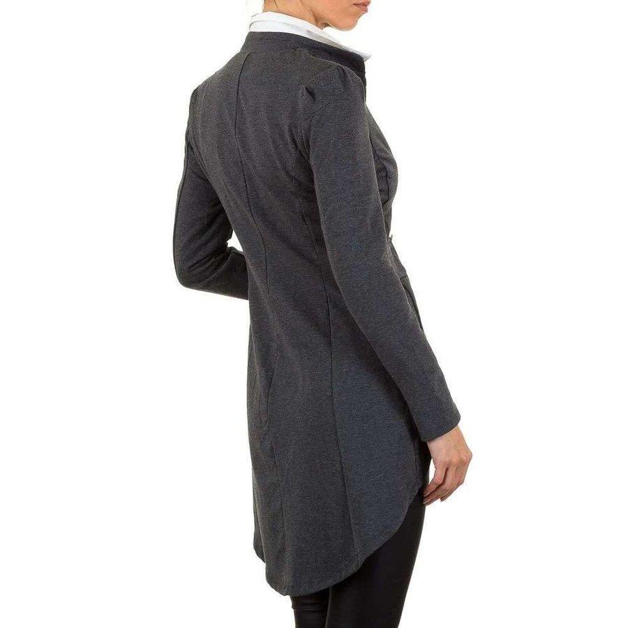 Lange Damen Blazer - grau
