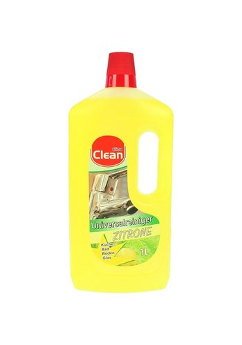 Clean Allesreiniger SCHOON 1000 ml Citrus Power