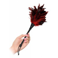 Frisky Feather Duster