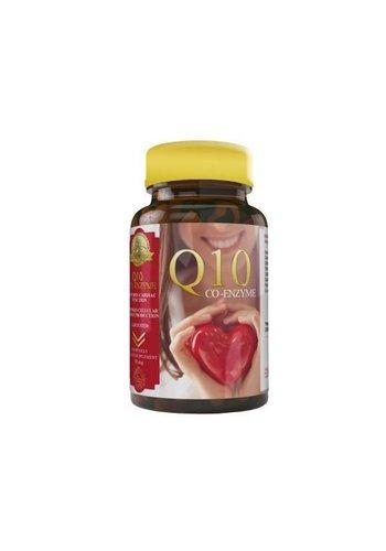Halal Pharma CO - enzym Q10 - 60 stuks