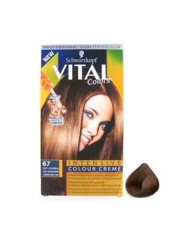 Schwarzkopf Teinture pour les cheveux - Brun clair doré - n ° 67