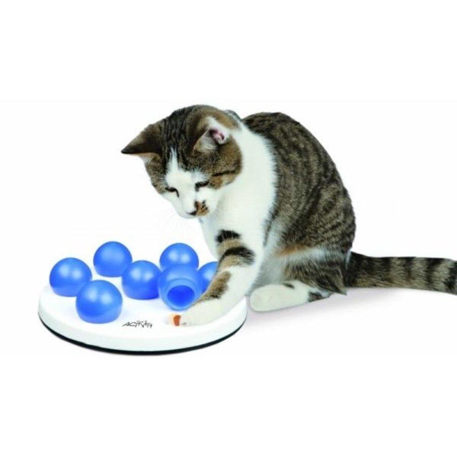Jeu de chat - Activité Solitaire
