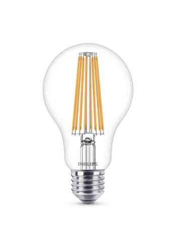 Philips E27 LED-lamp A67 - 100W
