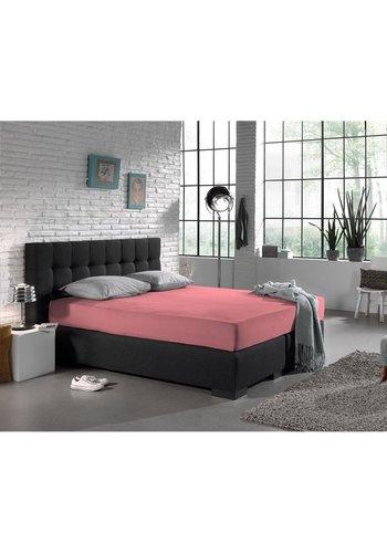 Dreamhouse Hoeslaken Jersey 135 gr. Pink