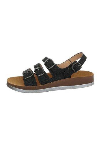 Neckermann dames flash sandalen zilver 6864