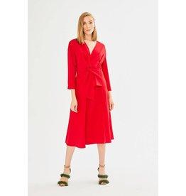 Exquise V-Neck Dress