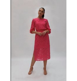 Fee G Pink Sheer Jacquard Midi Dress