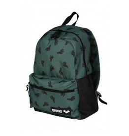 Arena Arena Team Backpack 30 Cactus