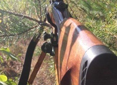 IWA-N shooting stick