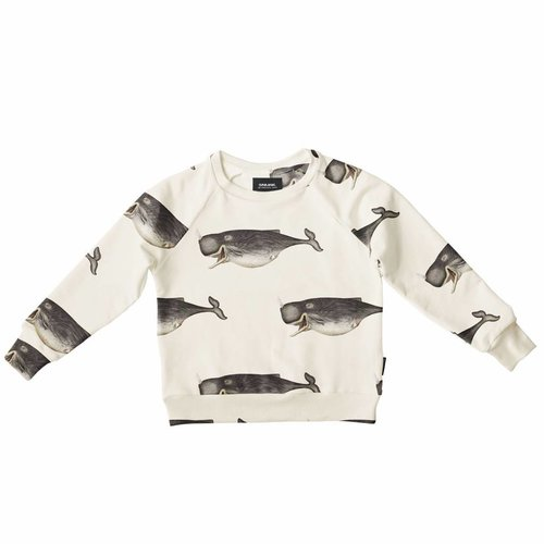 SNURK Whale by The DybDahl Sweater trui