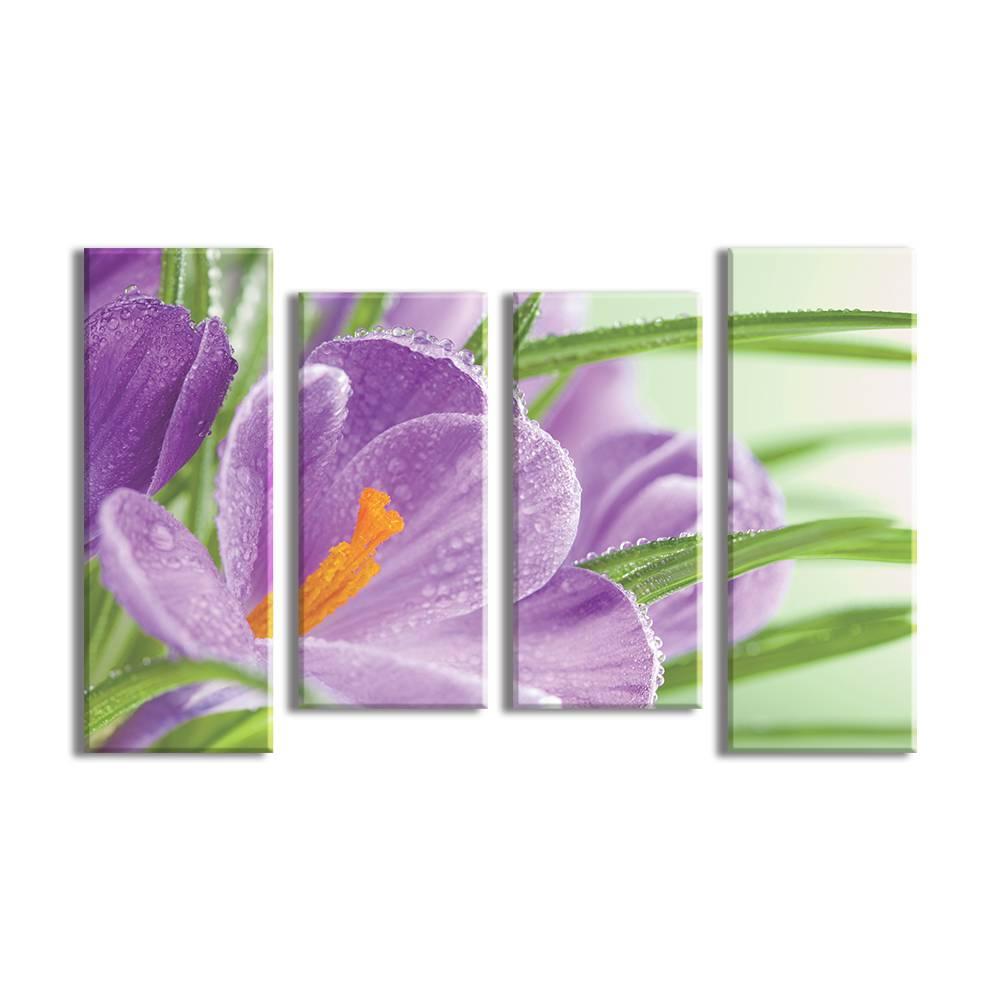 Foto op canvas - bloemen - 3F4