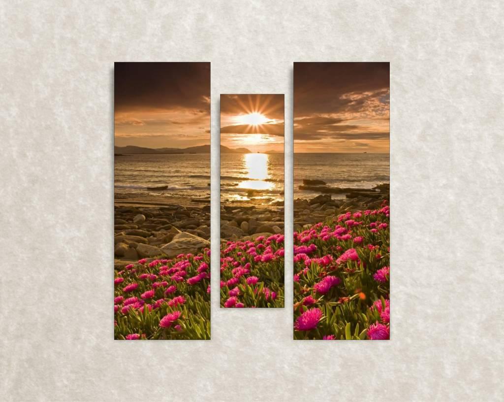 Canvas foto - muurdecoratie - bloemveld