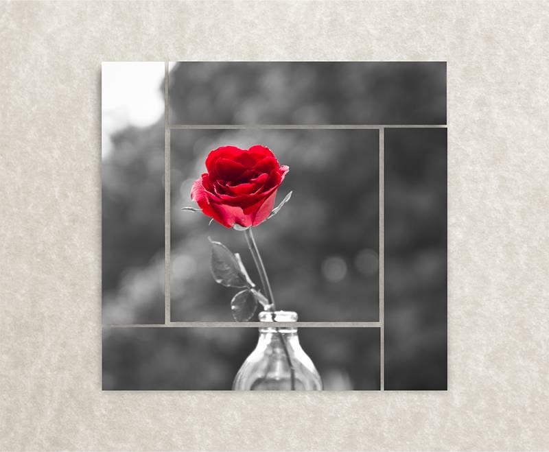 Foto op canvas - roos aan de muur