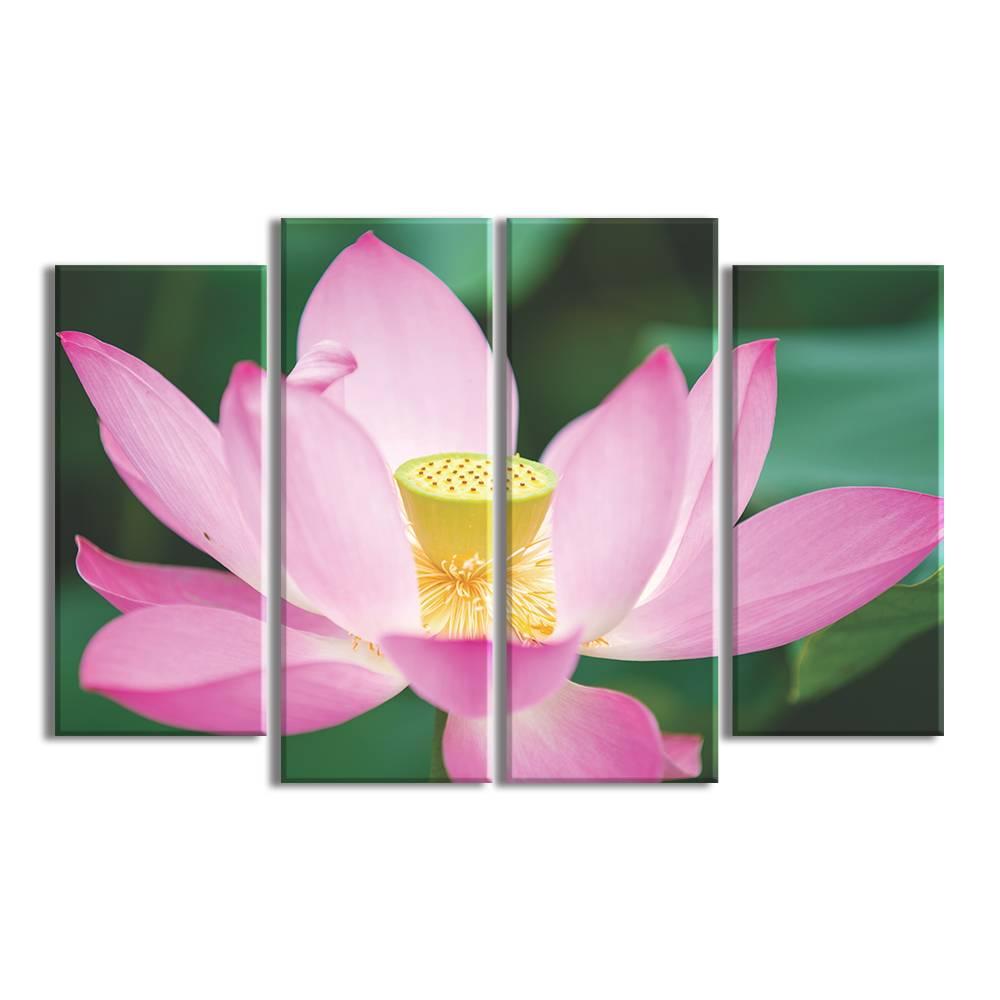 Foto op canvas - bloemen - 8F4