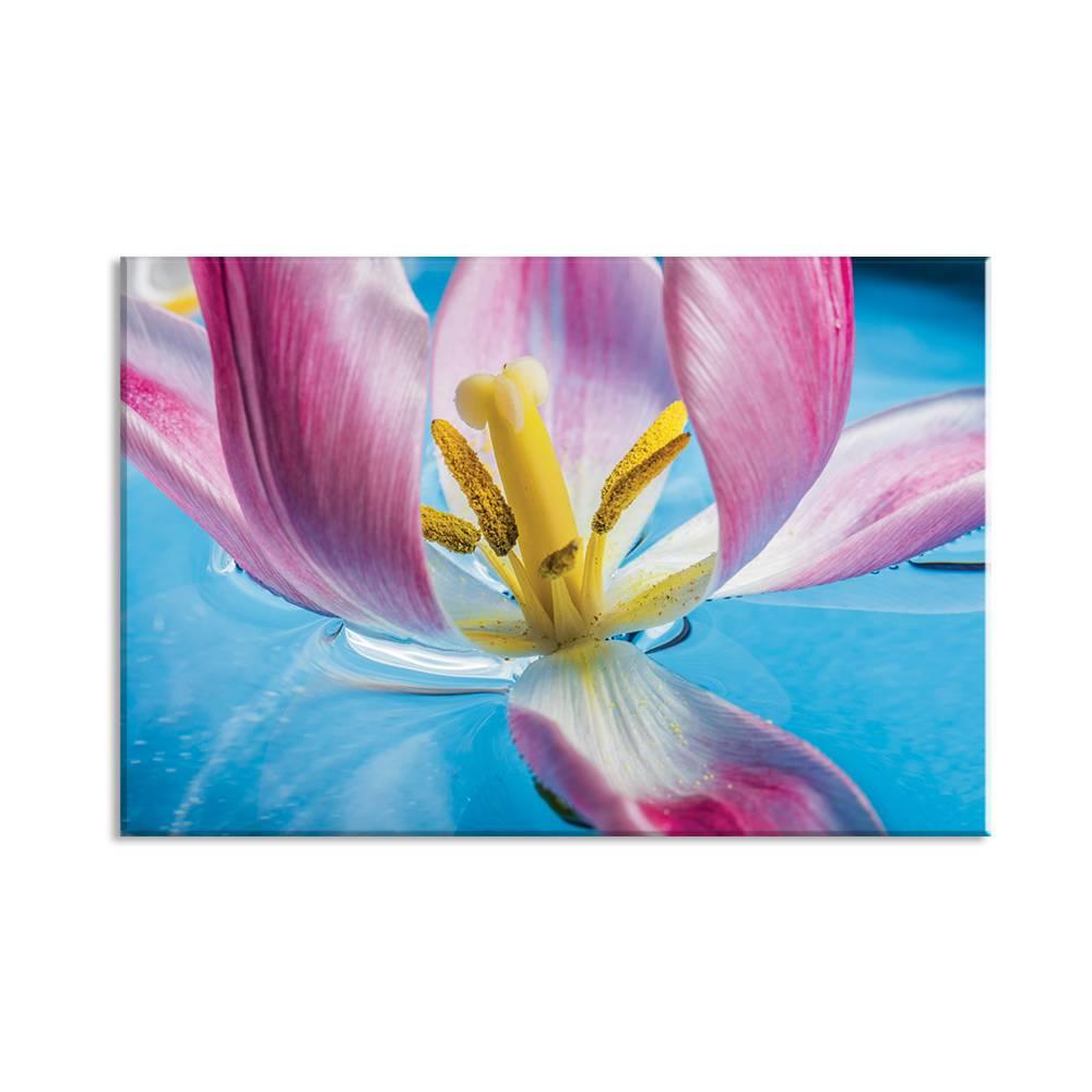 Foto op doek van bloem - 1F1