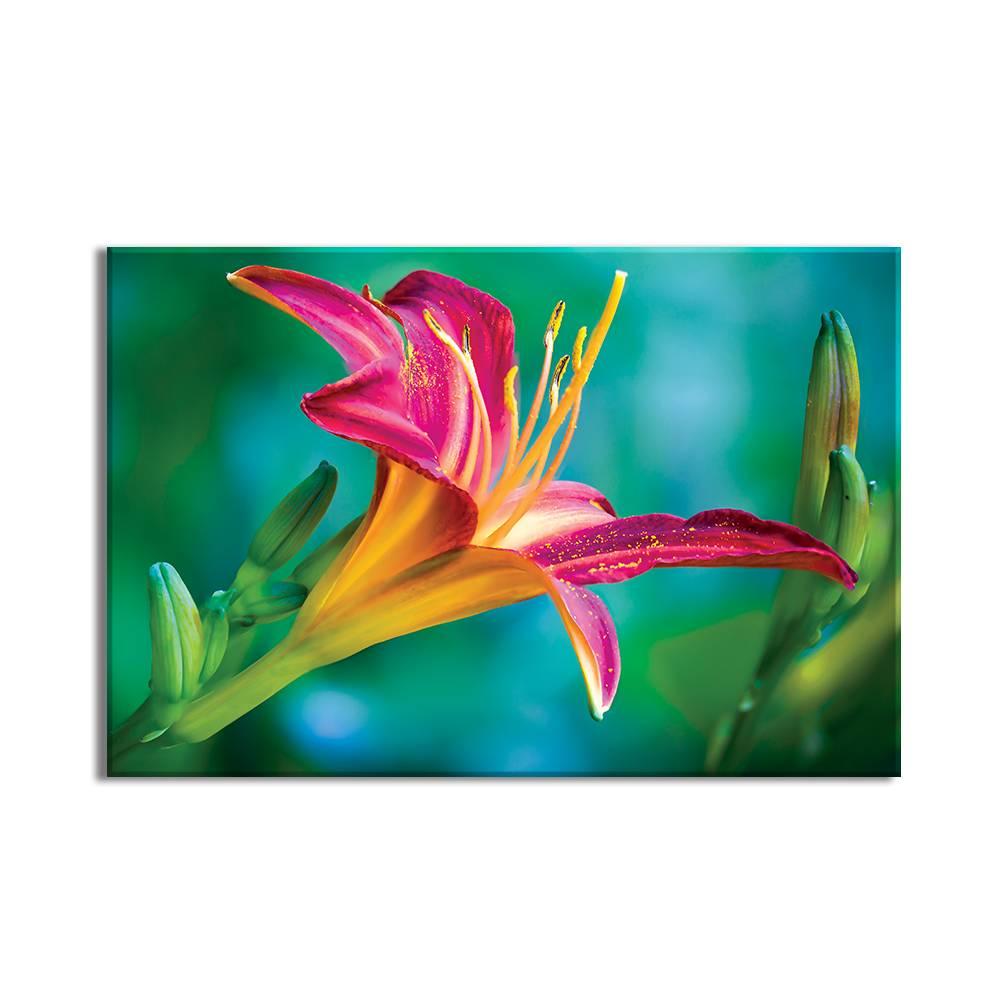 Foto op doek - bloemen - 3F1