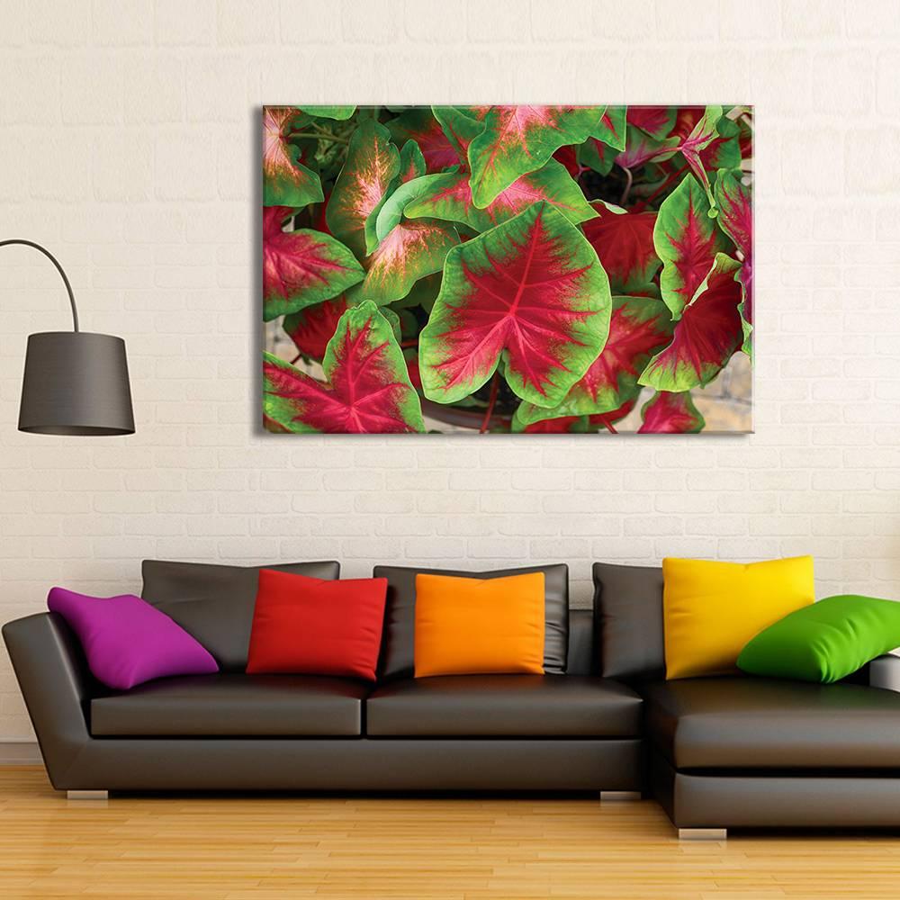 Foto op doek - bloemen - 5F1