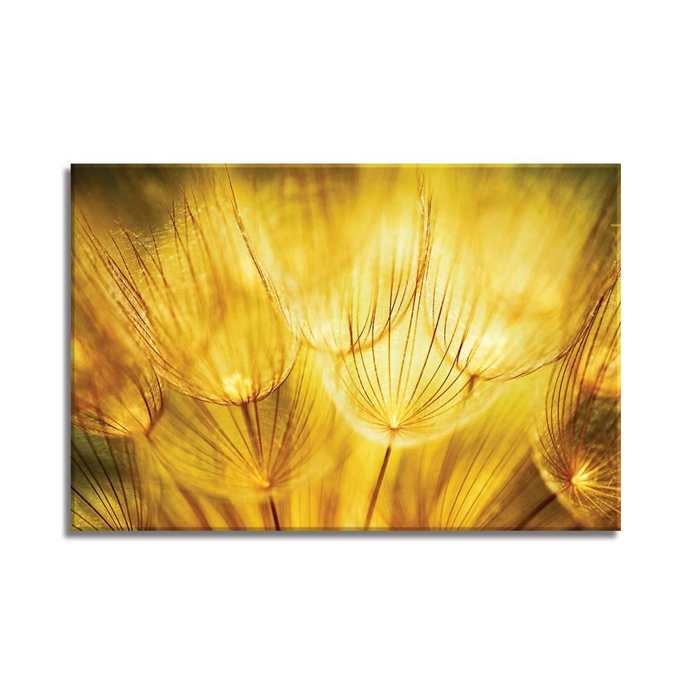 Foto op doek - bloemen - 7F1